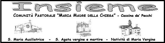 Logo Insieme
